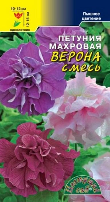 Семена Цветущий сад Петуния Верона смесь махровая, 10 семян4607021813938Представляем новый компактный крупноцветковый махровый гибрид. растение образует кустик, высотой не более 12-15 см, усыпанное огромными, с сильно гофрированными лепестками цветков, достигающими в диаметре 10-12 см. Петуния идеально подходит для групповых посадок, балконных ящиков, вазонов и цветочных горшков. Она неприхотлива, отлично чувствует себя даже в условиях большого города и будет радовать вас пышным цветением весь сезон. АГроТЕХнИКА выращивается рассадным способом, семена при этом лишь слегка присыпают легким грунтом или производят посев под стекло. в грунт рассаду высаживают, когда минует угроза заморозков. Петуния предпочитает богатую питательными веществами супесчаную почву на солнечном месте. Полив умеренный, так как петуния не переносит переувлажнения