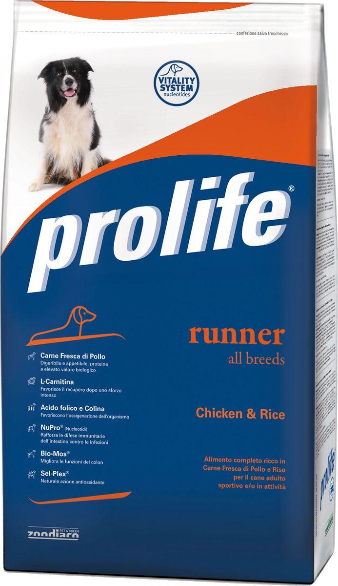 Корм сухой Prolife для активных собак, курица, рис, 3 кг