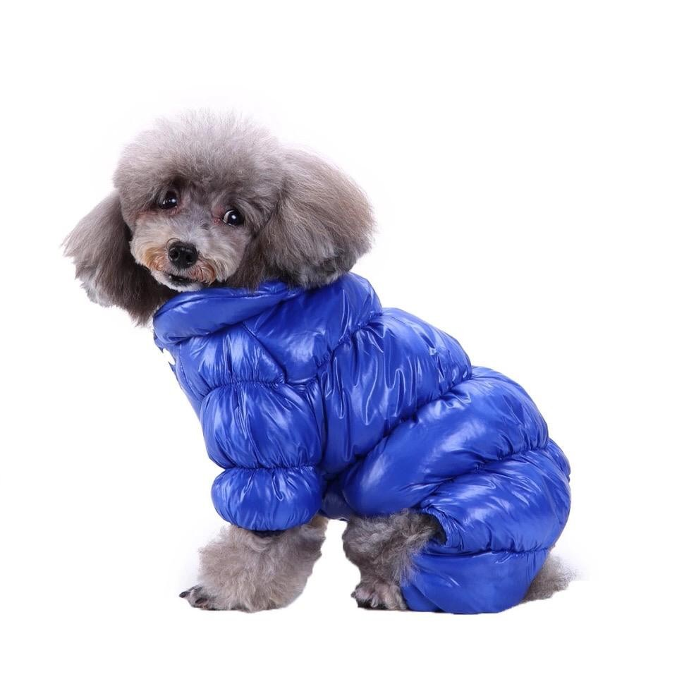 Одежда для собак Arnydog.ru Комбинезон Зима синий MQ-26_M, синий одежда для собак arnydog ru комбинезон super синий 17zf136 2 m
