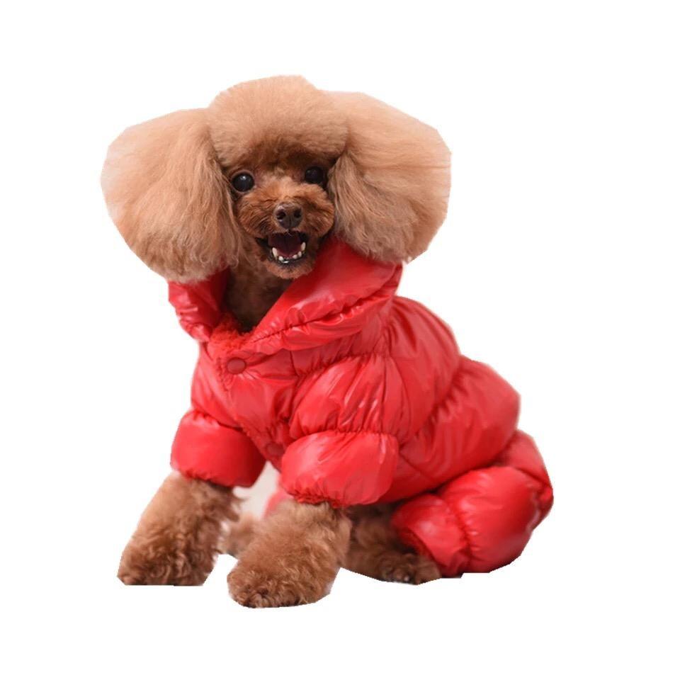 Одежда для собак Arnydog.ru Комбинезон Зима красный MQ-27_L, красный