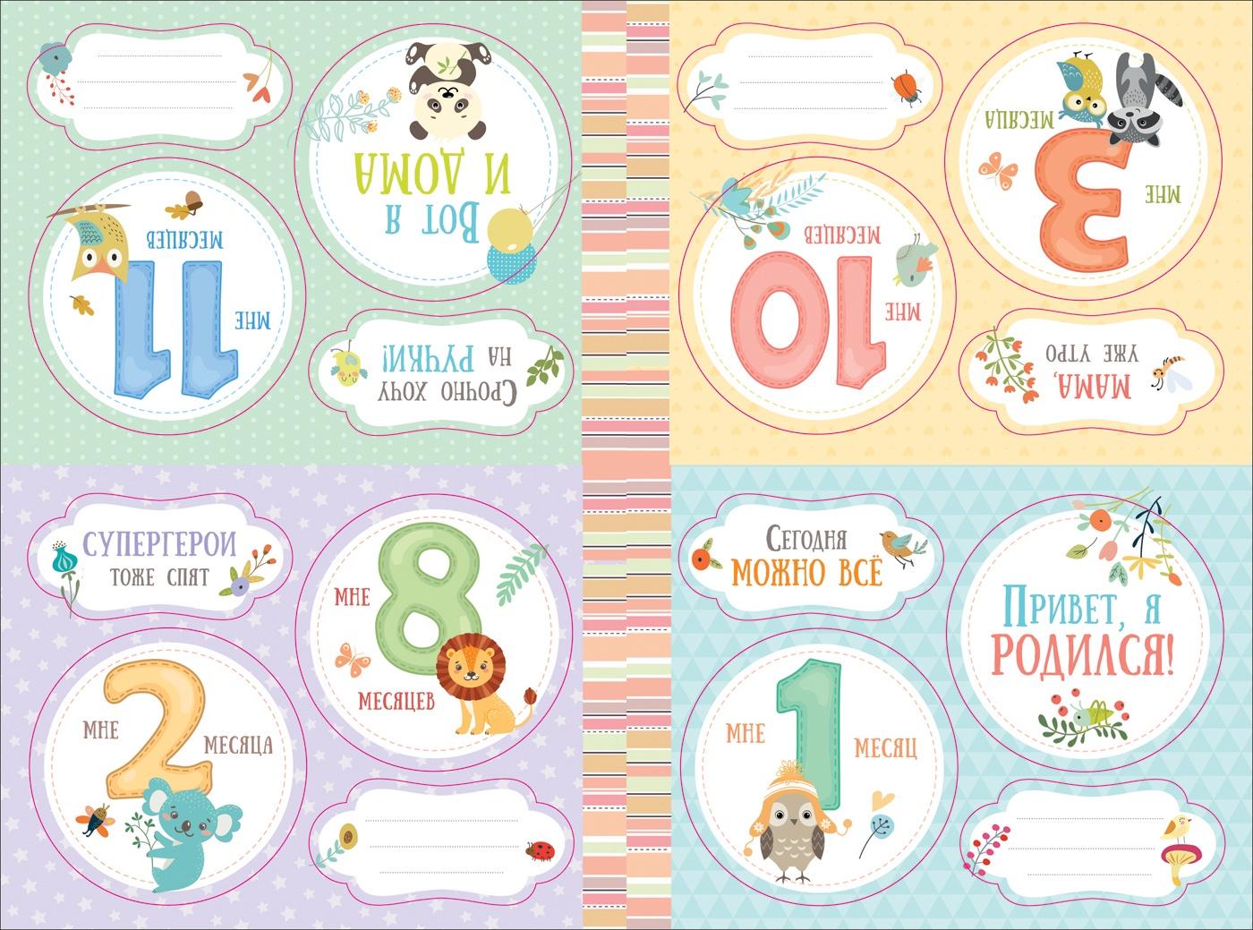 Наш малыш. Наклейки для фотосессий от рождения до года. Коллекция из 16 круглых наклеек для...