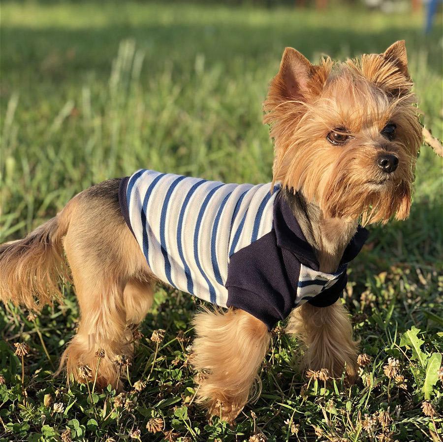 Футболка-поло для собак Osso Fashion, Тп-1035, размер 35