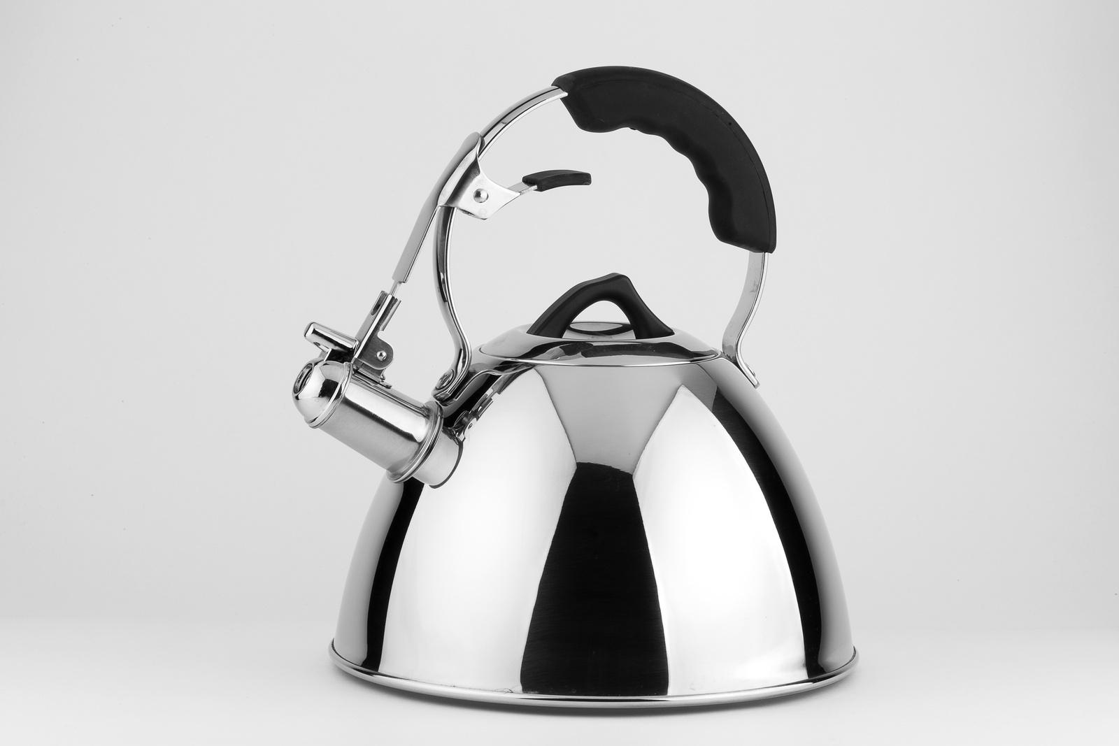 Чайник CARL SCHMIDT SOHN CS058463, серебристый чайник carl schmidt sohn aquatic со свистком цвет серый металлик 5 л