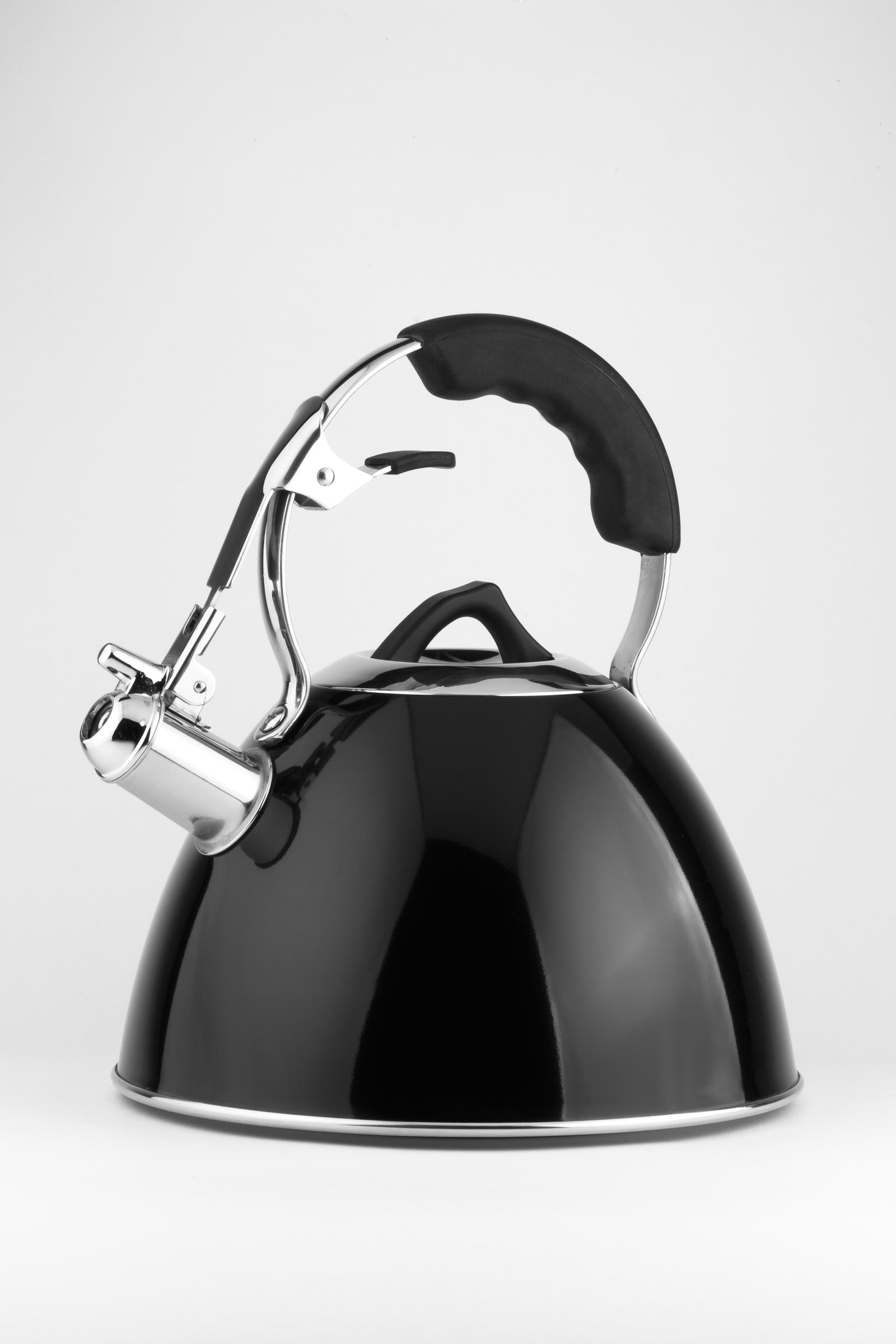Чайник CARL SCHMIDT SOHN CS066598, Нержавеющая сталь чайник carl schmidt sohn aquatic со свистком цвет серый металлик 5 л