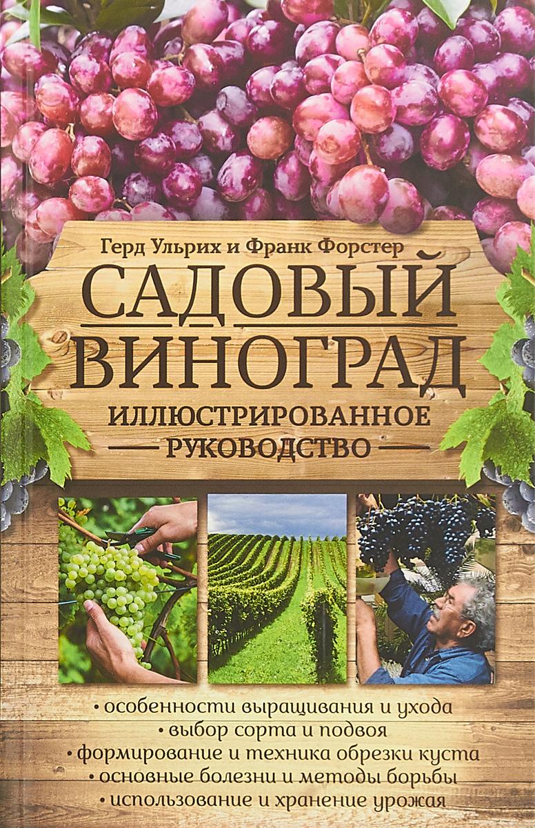 Герд Ульрих,Форстер Франк Садовый виноград. Иллюстрированное руководство