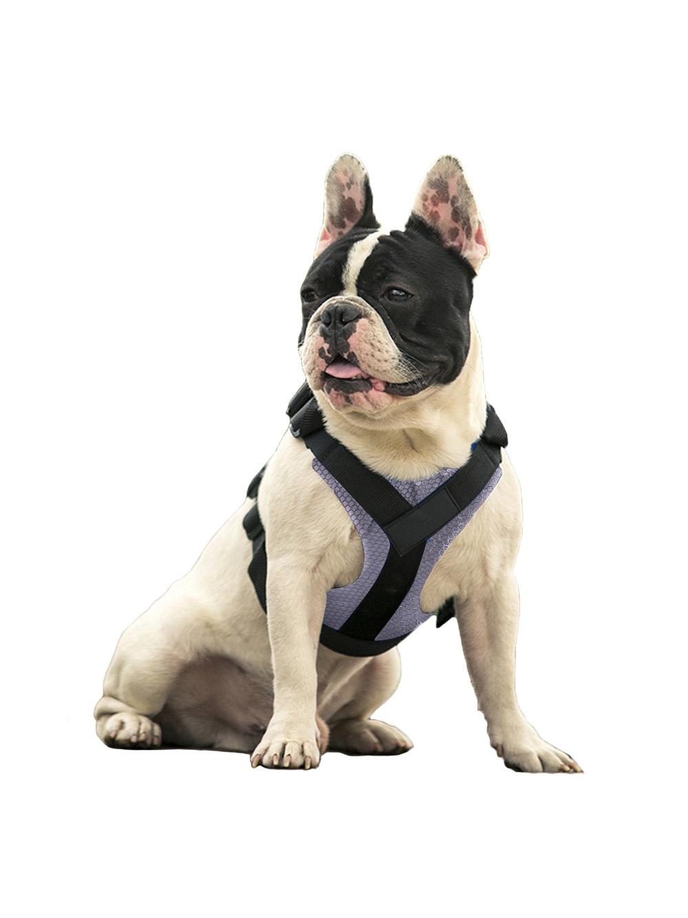 Шлейка Pets & Friends ошейник для собак серый под грудь, размер L PF-DHF-07, серый