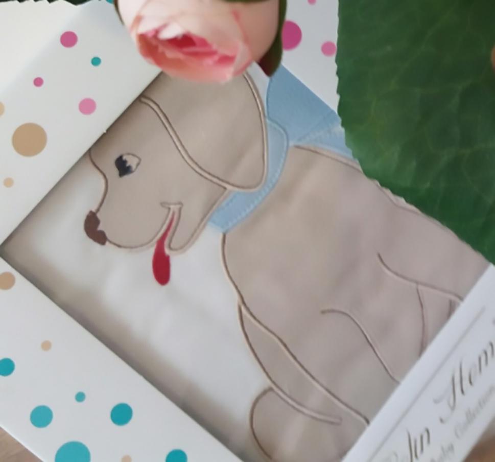 Комплект белья для новорожденных Gelin home DOGGY, голубой, голубой, кремовый