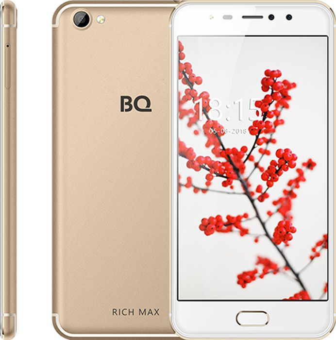 Смартфон BQ Mobile Rich Max 16 GB, золотой смартфон bq mobile bq 5521l rich max black