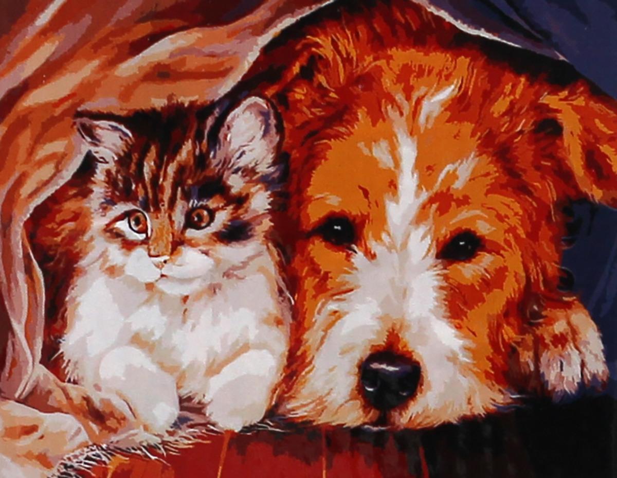 Фото - Набор для живописи Рыжий кот Котенок и щенок, 50 х 40 см набор для живописи рыжий кот лошадь и кот в цветах 50 х 40 см