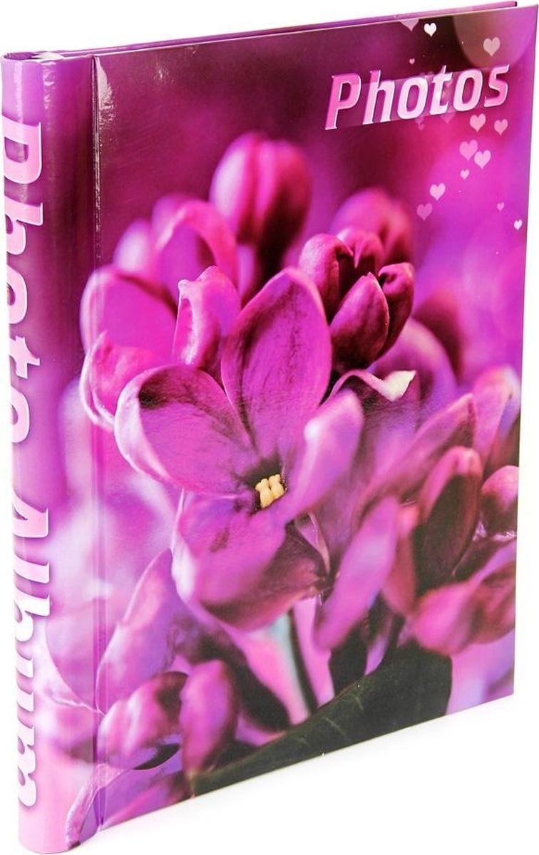 Фотоальбом Pioneer Spring Flowers, с магнитными листами, 55911 LM-SA10, фото 23 х 28 см55911 LM-SA10Альбом для фотографий формата 23х28 см. Тип обложки: ламинированный картон. Тип листов: магнитные. Тип переплета: спираль. Кол-во листов: 10. Материалы, использованные в изготовлении альбома, обеспечивают высокое качество хранения Ваших фотографий, поэтому фотографии не желтеют со временем