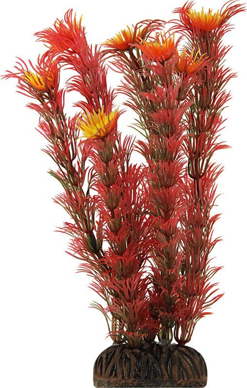 Растение для аквариума Laguna Амбулия,20 см аксессуары для аквариумов и террариумов laguna растение для аквариума с распылителем 30см