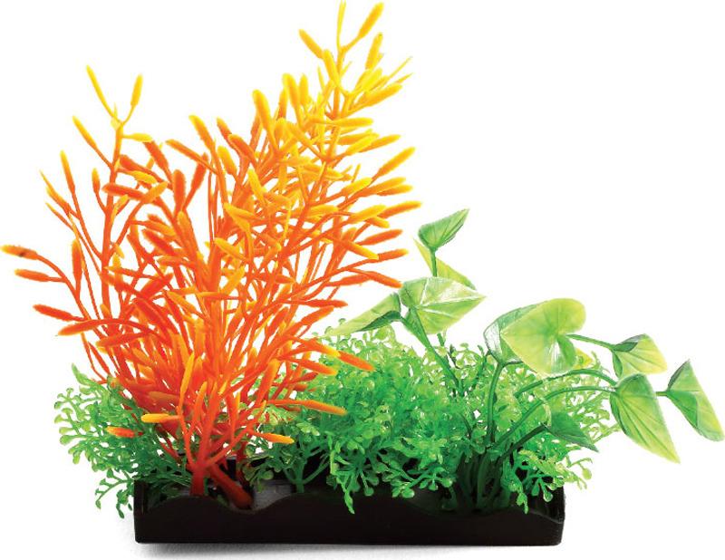 Растение для аквариума Laguna Композиция из аквариумных растений, 15 см аксессуары для аквариумов и террариумов laguna растение для аквариума с распылителем 30см