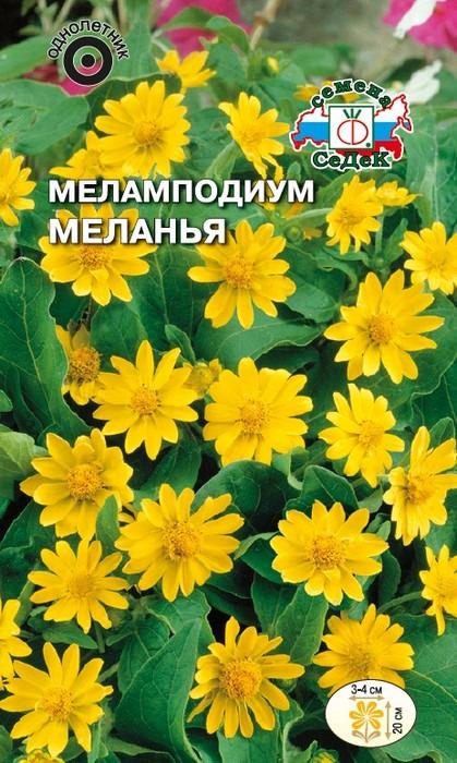 """Семена Седек """"Меламподиум Меланья"""", 00000015009, 0,1 г"""