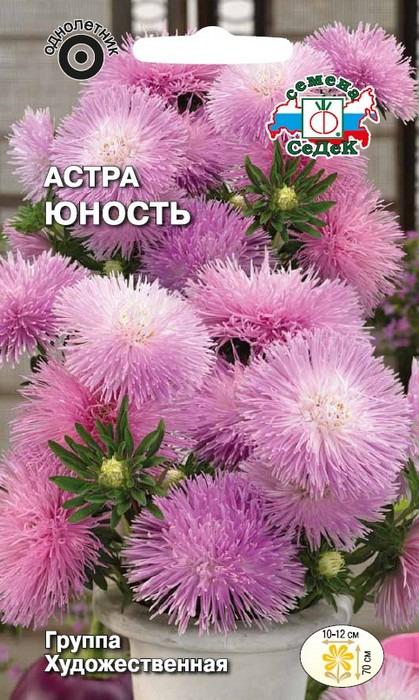 """Семена Седек """"Астра Юность"""", 00000017089, 0,2 г"""
