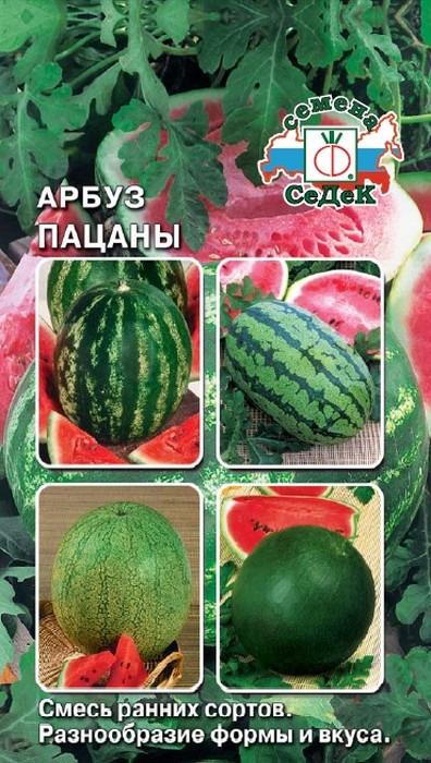 """Семена Седек """"Арбуз Пацаны"""", 00000014836, 1 г"""