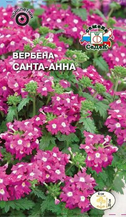 """Семена Седек """"Вербена Санта-Анна"""", 00000015039, 0,1 г"""