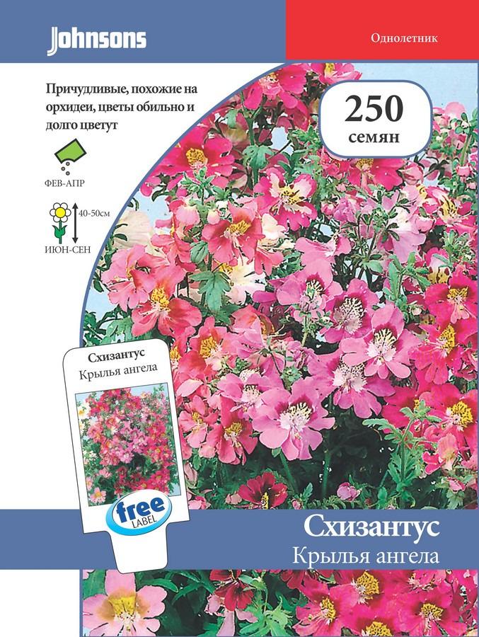 Семена Johnsons Схизантус Крылья ангела, 12892, 250 семян12892Схизантус - великолепное однолетнее растение высотой 40 см, ещё достаточно редко выращиваемое в российских садах, хотя вполне заслуживающее этого. Пёстрые цветки схизантуса, собранные в рыхлые верхушечные соцветия, по строению и экзотической окраске напоминают цветки орхидей и сплошь покрывают все растение с июня до осенних холодов. Поверхность цветков сплошь покрыта узорами разнообразных цветов и рисунков: цветными пятнами, крапинками, полосками. Выращивается рассадным способом.