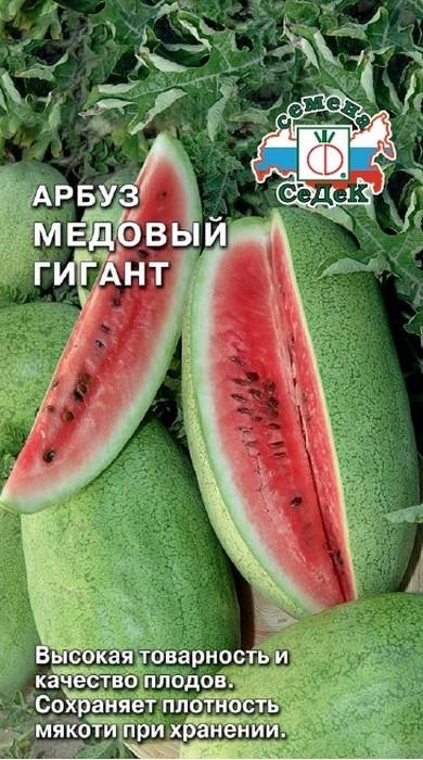 """Семена Седек """"Арбуз Медовый Гигант"""", 00000015797, 1 г"""