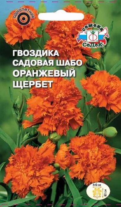 """Семена Седек """"Гвоздика Оранжевый щербет"""", 00000014951, 0,1 г"""