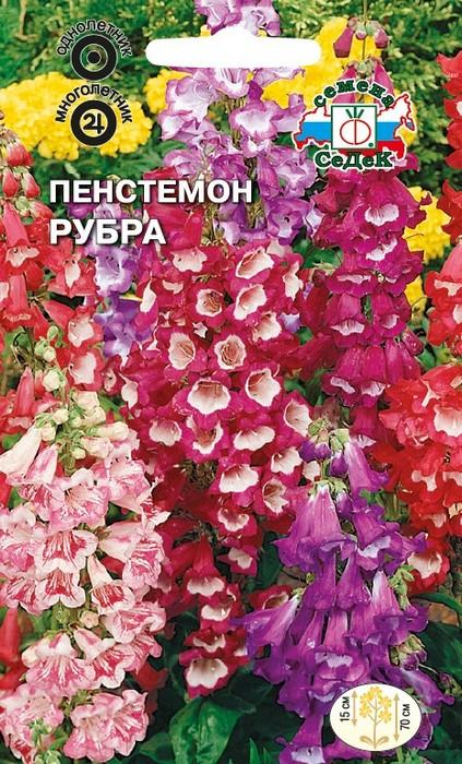 "Семена Седек ""Пенстемон Рубра"", 00000014074, 0,1 г"