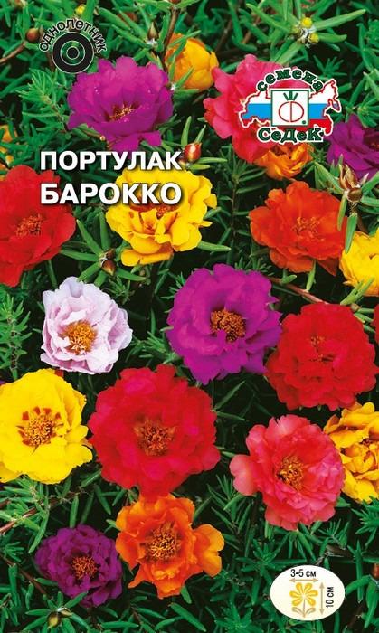 """Семена Седек """"Портулак Барокко"""", 00000014851, 0,1 г"""