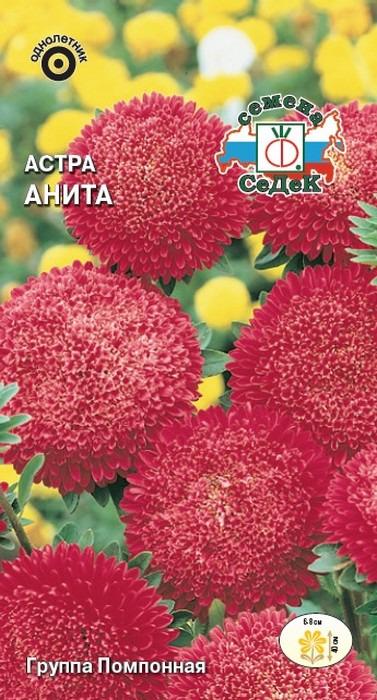Семена Седек Астра Анита, 00000013893, 0,2 г в саду шумел мокрый ветер к какой группе относится каждое слово