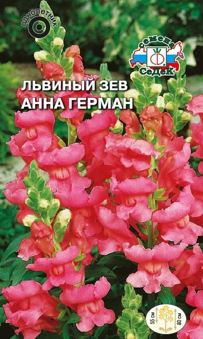 """Семена Седек """"Львиный зев Анна Герман"""", 00000016136, 0,1 г"""