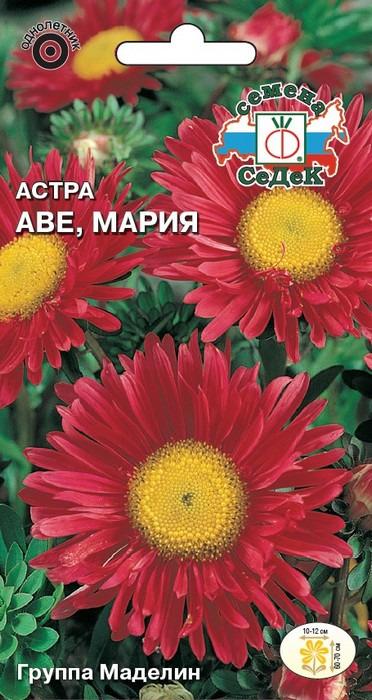 """Семена Седек """"Астра Аве Мария"""", 00000016121, 0,2 г"""