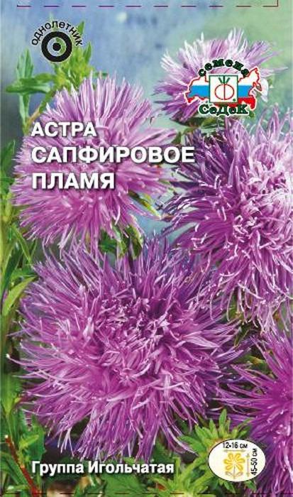 """Семена Седек """"Астра Сапфировое пламя"""", 00000015721, 0,2 г"""