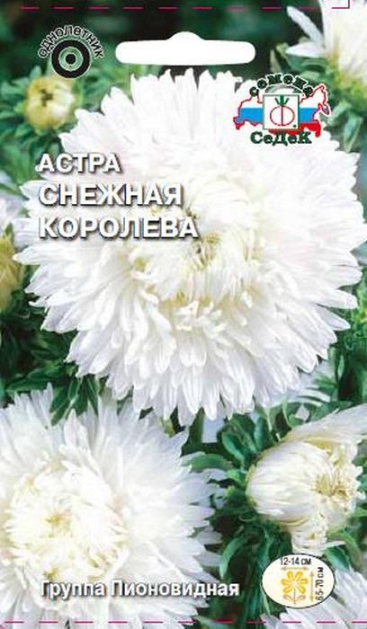 """Семена Седек """"Астра Снежная королева"""", 00000016070, 0,1 г"""