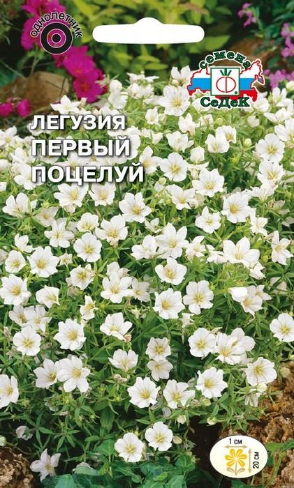 """Семена Седек """"Легузия Первый поцелуй"""", 00000015181, 0,2 г"""