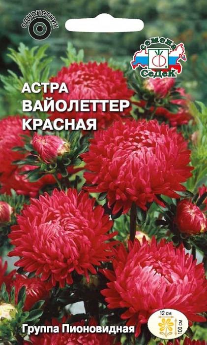 """Семена Седек """"Астра Вайолеттер красная"""", 00000016498, 0,1 г"""