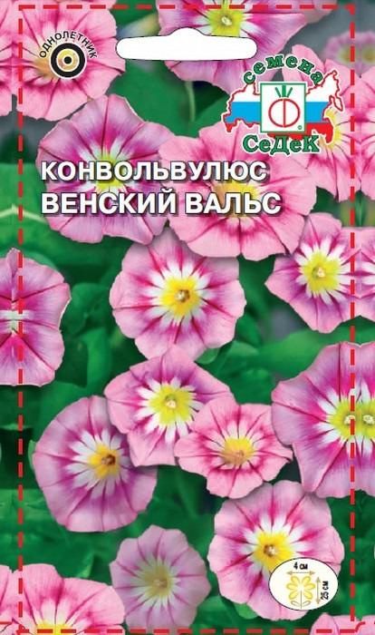 """Семена Седек """"Конвольвулюс Венский вальс"""", 00000013723, 1 г"""