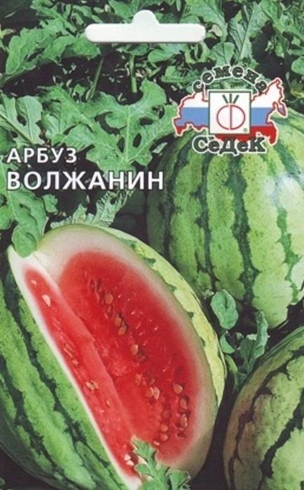 """Семена Седек """"Арбуз Волжанин"""", 00000014696, 1 г"""