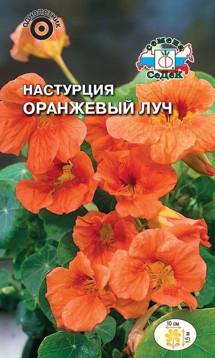 """Семена Седек """"Настурция Оранжевый луч"""", 00000014563, 1 г"""