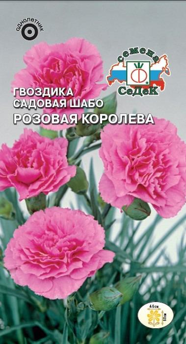 "Семена Седек ""Гвоздика Розовая королева"", 00000014948, 0,1 г"
