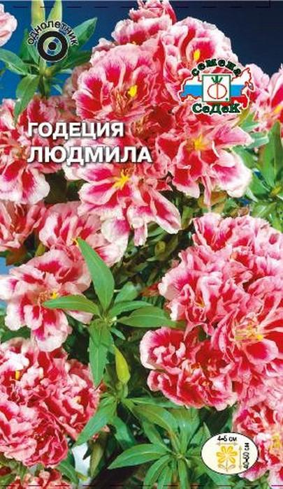 "Семена Седек ""Годеция Людмила"", 00000014455, 0,1 г"