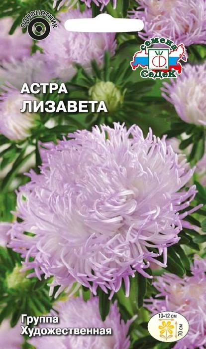 """Семена Седек """"Астра Лизавета"""", 00000017091, 0,2 г"""
