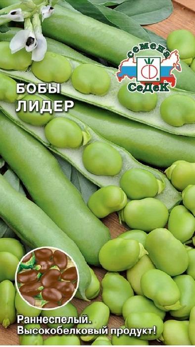 """Семена Седек """"Бобы Лидер"""", 00000015525, 10 г"""