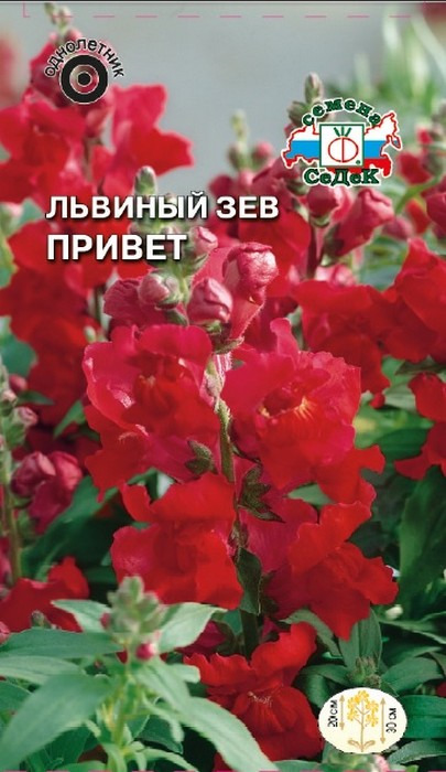"""Семена Седек """"Львиный зев Привет"""", 00000014432, 0,1 г"""