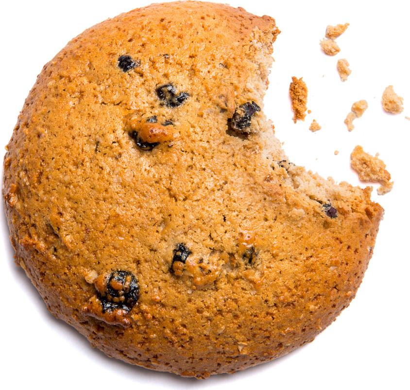 Протеиновое печенье Bombbar, низкокалорийное, смородина, 40 г BOMBBAR