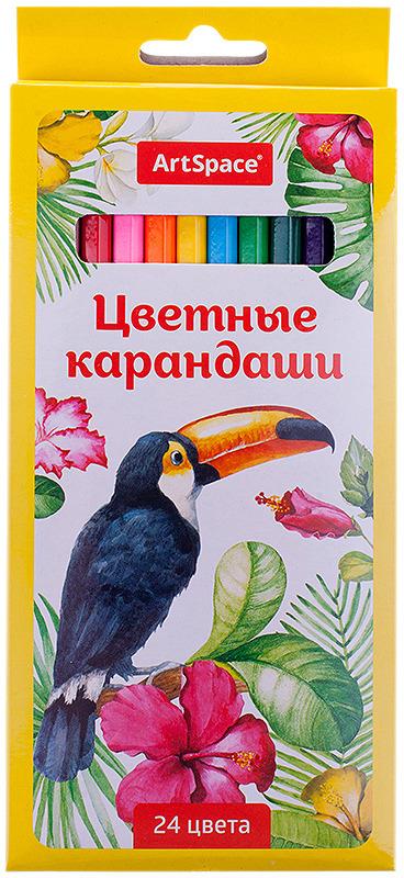 Набор цветных карандашей ArtSpace Птицы, 229346, 24 цвета