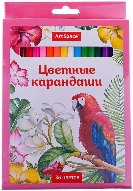 Набор цветных карандашей ArtSpace Птицы, 229347, 36 цветов набор цветных карандашей carioca tita пластиковые с европодвесом 36 цветов