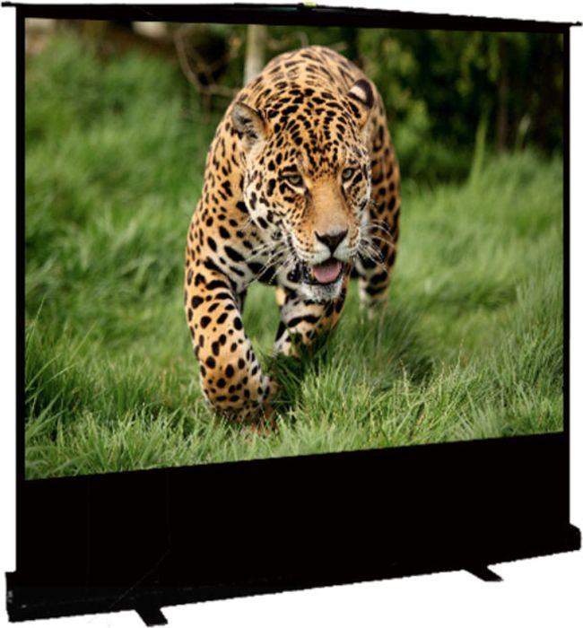 цена на Экран проекционный Cinema S'OK SCPSF-69x122 16:9 напольный, черный