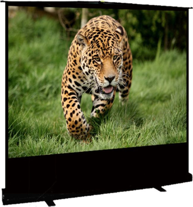 цена на Экран проекционный Cinema S'OK SCPSF-177x100 Floor Stand Screen 16:9 напольный, черный