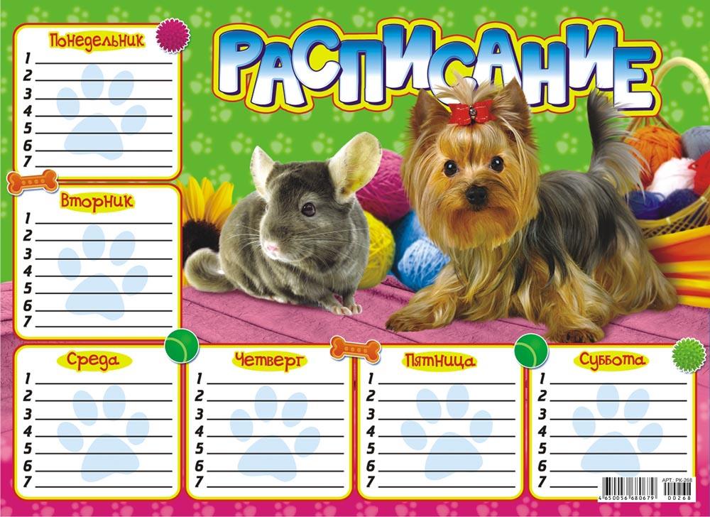 Расписание (А4-картон) Домашние любимцы РК-268