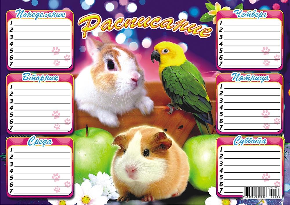 Расписание А4 (картон-глиттер) Домашние животные РКГ-071