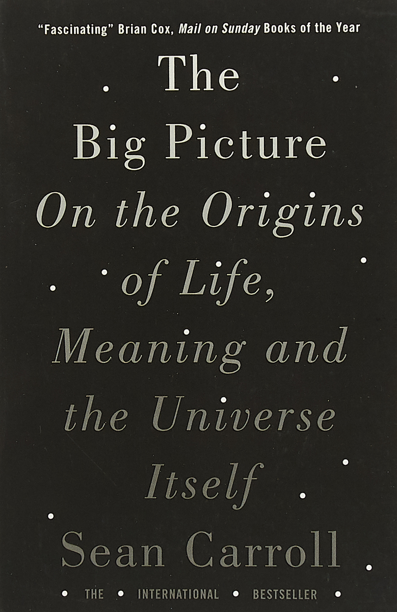The Big Picture: On the Origins of Life, Meaning, and the Universe Itself gavin flood the importance of religion meaning and action in our strange world