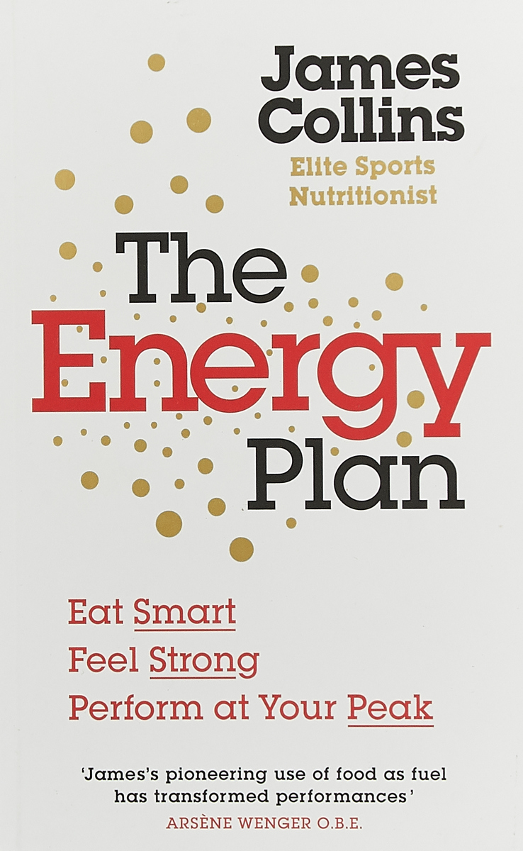 ENERGY PLAN, THE ken blanchard the energy bus 10 rules to fuel your life work and team with positive energy