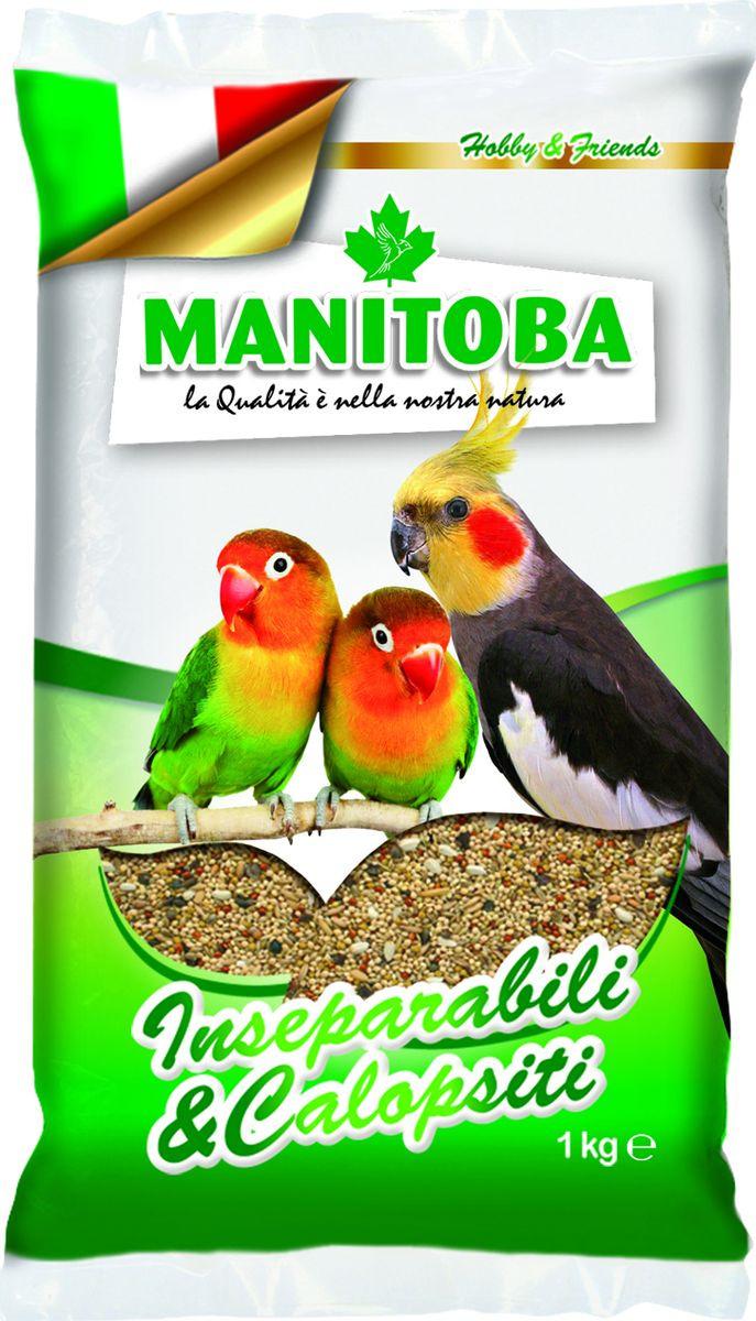 Корм сухой Manitoba, для средних попугаев, 1 кг корм сухой manitoba для крупных попугаев 2 кг